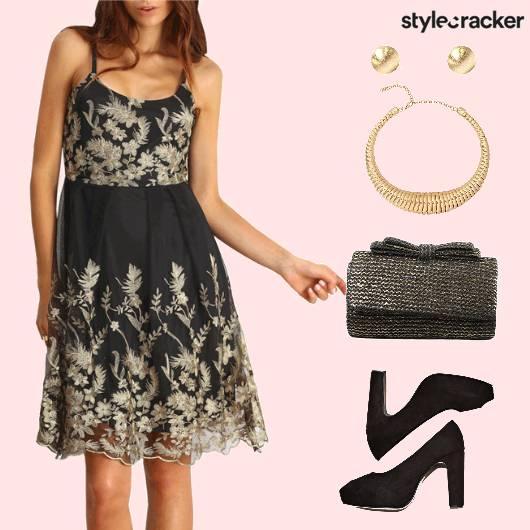 Dinner EmbroideredNet Dress  - StyleCracker