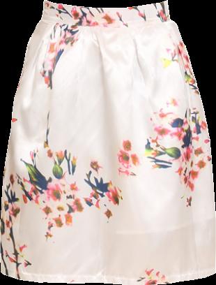 Faye Flare skirt - StyleCracker