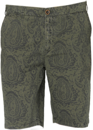 Olive Green Printed Shorts - StyleCracker