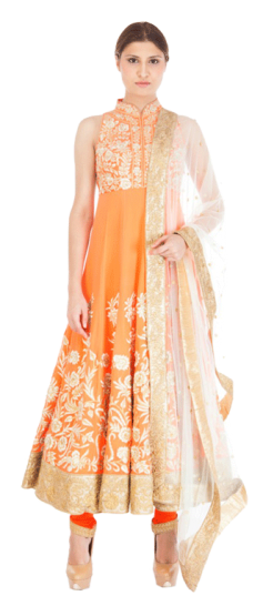 Tamanna Punjabi Kapoor - Anarkali with Ivory and Gold Resham - StyleCracker