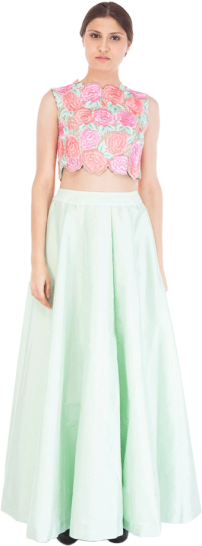 Aneekha - Light Green Taffeta Skirt - StyleCracker