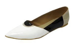 Zoya Pointed Ballerina - StyleCracker