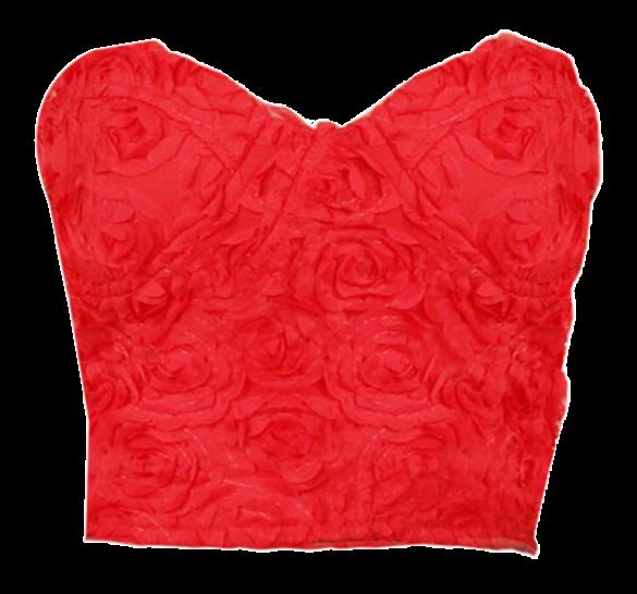 Rosey Bustier Crop Top - StyleCracker